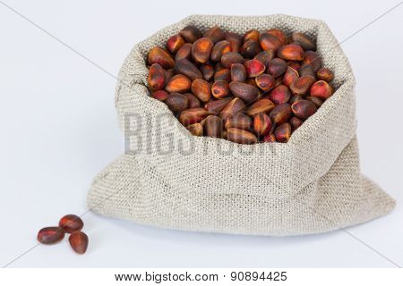 Isolated pine (cedar) nuts in the linen bag close up