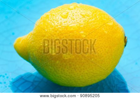 Whole lemon with water drops on a blue plate