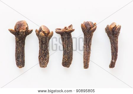 Isolated cloves close up still life