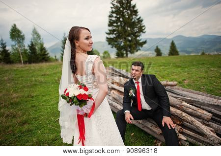 Wedding Couple In The Carpathian Mountains. Groom Sits On The Boards
