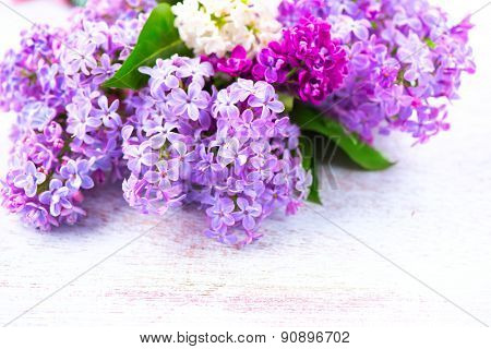 Lilac Spring flowers border over white wooden background. Bunch of violet and purple lilac flower with green leaves close up