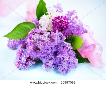 Lilac flowers bunch over blue wooden background. Beautiful Lilac spring flower design closeup. Copy space for your text