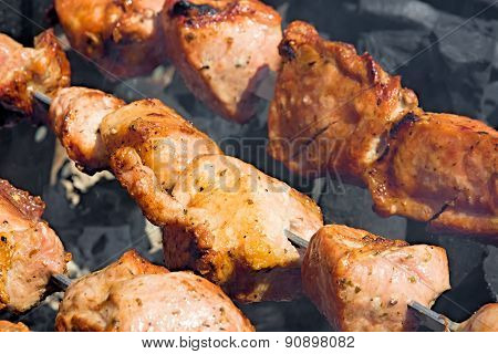 Shashlik Over Charcoal.