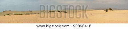 The famous dunes at Corralejo Fuerteventura