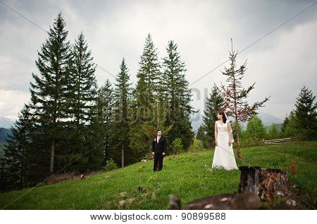 Wedding Couple  At The Tree