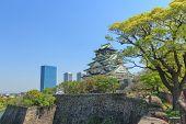 picture of castle  - Himeji Castle is Traditional Japanese castle in Osaka Japan - JPG
