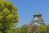 foto of castle  - Himeji Castle is Traditional japanese castle in Osaka Japan - JPG