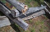 stock photo of log fence  - The corner of a fence of stacked logs - JPG
