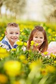 image of orchard  - Girl lying with the boy in a blossoming orchard - JPG