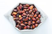 stock photo of pine nut  - Isolated pine  - JPG