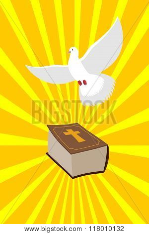 Bible And White Dove Symbols Of Christianity. Pure White Dove Brought  Holy Bible. Old Book Of  New