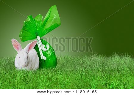 White Rabbit and green Easter egg on grass on green background