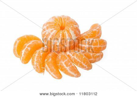 Tangerine And Small Segments Of A Tangerine