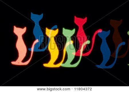 Light Cats