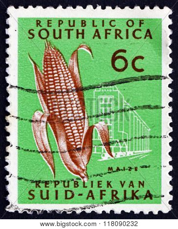 Postage Stamp South Africa 1971 Ear Of Corn, Maize
