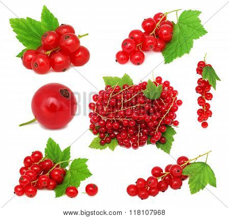 Set Ripe Redcurrant Berries With Green Leaves (isolated)