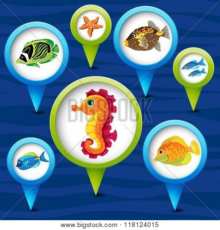 Colorful labels and tags with sea animals.