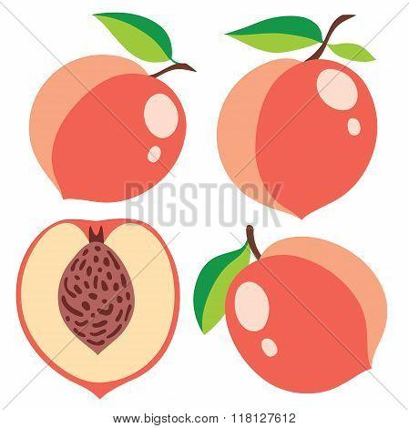 Vector Peaches Collection
