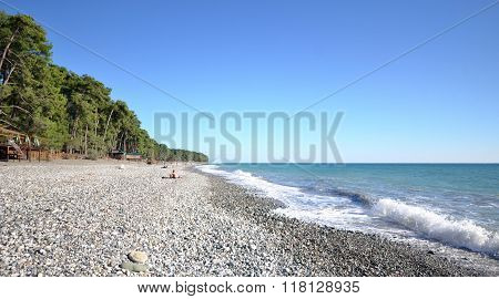 View Of The Beach In The Picunda, Abkhazia