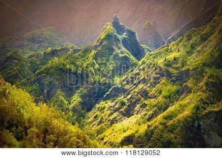 Wilderness area in center of Reunion Island. Warm filtered picture.