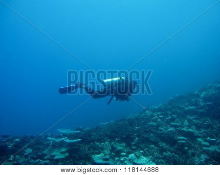 Scuba diving in the deep blue sea