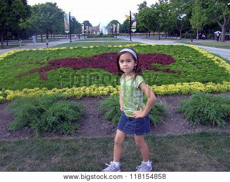 Brookfield Zoo Floral Arrangement