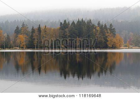 Autumn Trees On The Lakeshore