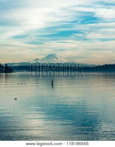 Rainier Over Lake Washington 3