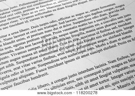 Lorem ipsum text paragraphs