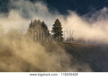 Foggy and sunny day of a autumn, on wild transylvania hills. Holbav. Romania. Low key, dark backgrou