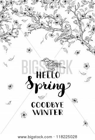 Hello Spring, Goodbye Winter!