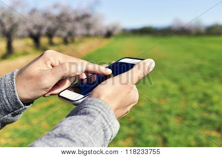 closeup of a young man using a smartphone in a natural landscape, with a grove of almond trees in full bloom in the background