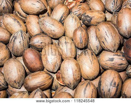 A Closeup On Pecan Nuts Stacked In A Pile