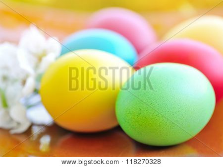 Colored Easter Eggs With White Flowers