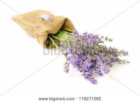Lavender Flowers (lavandula) In A Sack Isolated On White Background