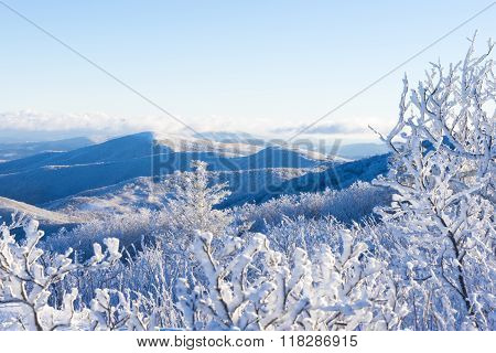 Winter In The Blue Ridge Mountains