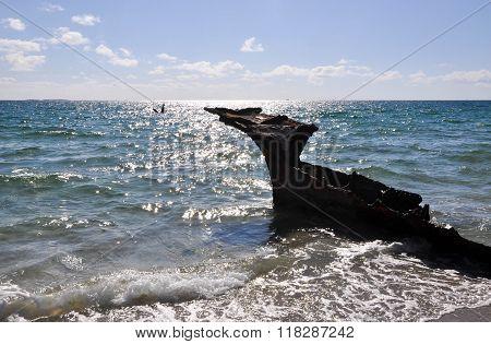 Shipwreck Silhouette