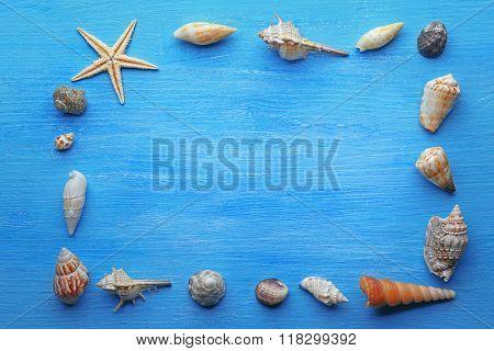 Frame shaped seashells on blue background
