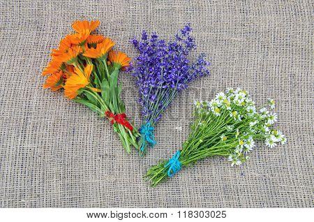 Bundles Of Fresh Chamomile, Calendula And Lavender Herbs On Linen