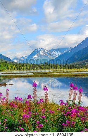 Alaskan Mountain & Lake Landscape
