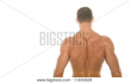 Back of a champion body builder