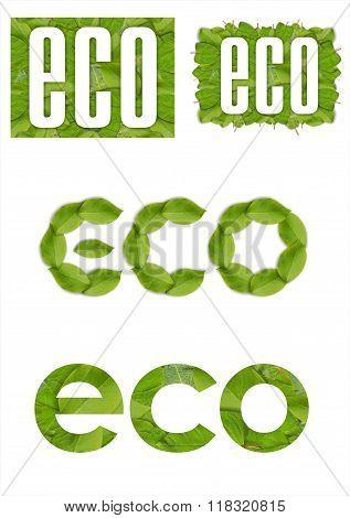 Word eco leaf