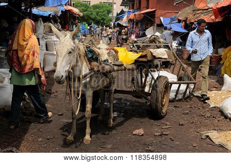 Horse-cart Being Used For A Transportation In Ethiopia