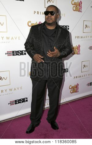 LOS ANGELES - FEB 14:  Twista, Carl Terrell Mitchell at the Primary Wave 10th Annual Pre-GRAMMY Party at the London West Hollywood on February 14, 2016 in West Hollywood, CA