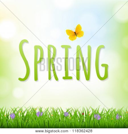 Spring Nature Background With Grass Border And Flowers