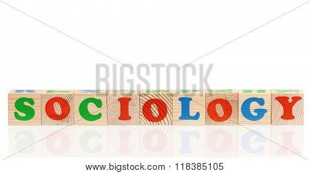Sociology word formed by colorful wooden alphabet blocks, isolated on white background