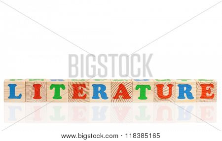 Literature word formed by colorful wooden alphabet blocks, isolated on white background