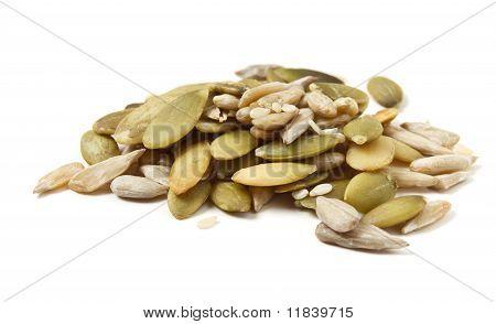 Seed Mixture