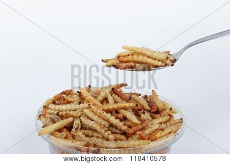 Thai Insects, Fried insects mealworms for snack on spoon.