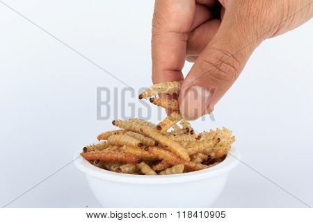 Thai Insects, Fried insects mealworms for snack in hand.